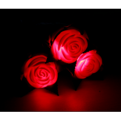Romantic LED Rose Candle Light