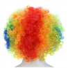 Colourful Clown Hair